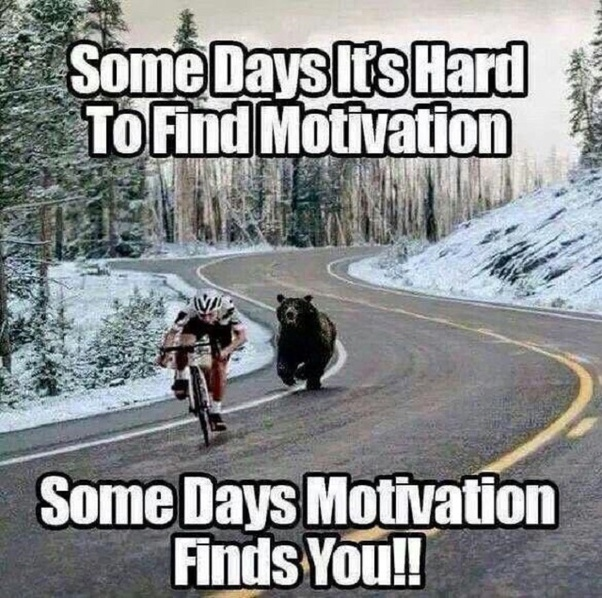 [Image] Some days it's hard to find motivation. Some days, motivation finds you!