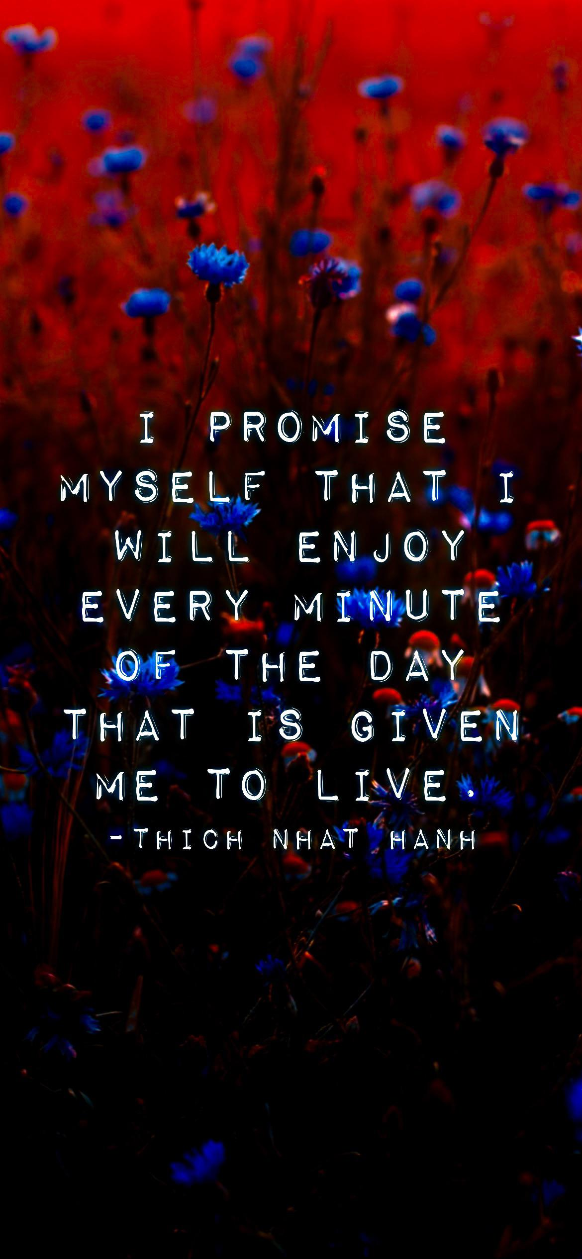 I promise myself that I will enjoy every minute of the day that is given me to live. -Thich Nhat Hanh [2532 x 1170p]