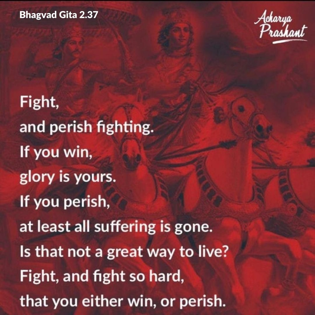Fight, and perish fighting. If you win, glory is yours. If you perish, at least all suffering is gone. Is that not a great way to live? Fight, and fight so hard that you either win or perish. ~Acharya Prashant (On Bhagvad Gita) [1080×1080]