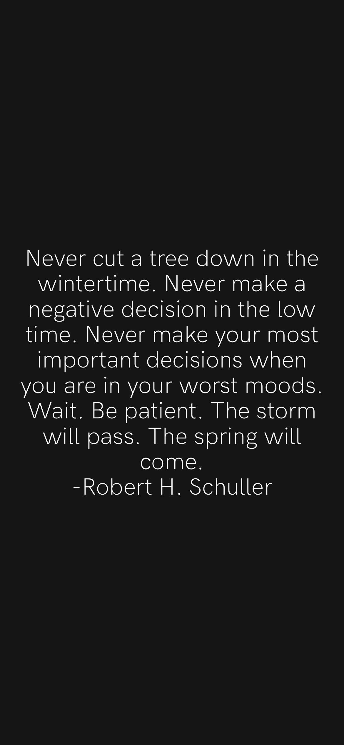 Never out a tree down in the wintertime. Never make a negative decision in the tow time. Never make your most important decisions when you are in your worst moods. Wait. Be patient. The storm vvitl pass. The spring vvilt come. -Robert H. Sohutter https://inspirational.ly