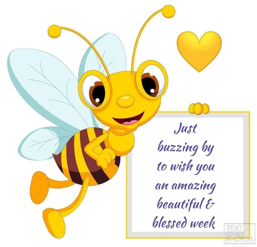 [Image] Just buzzing by to wish you an amazing beautiful & blessed week