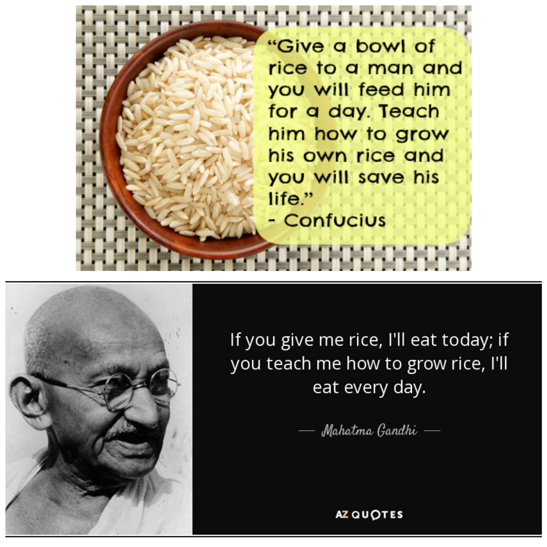 """""""Give a bowl of rice…"""" – Confucius """"If you give me rice…"""" – Gandhi [1920×1920]"""