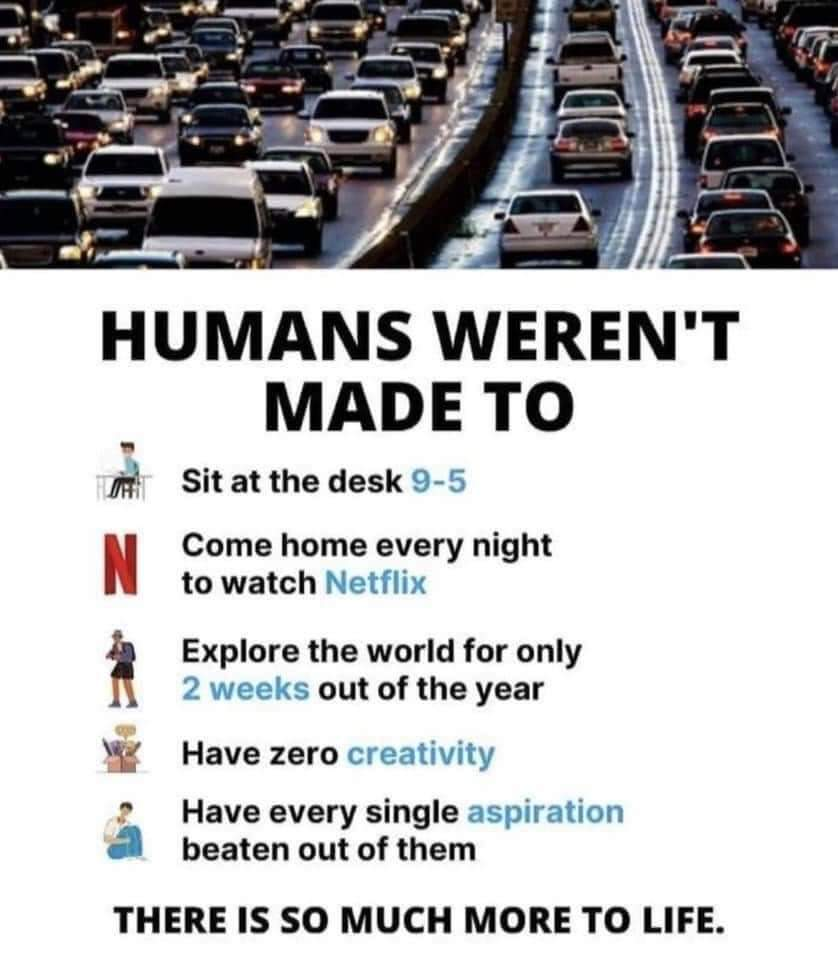 """HUMANS WEREN' T MADE T0 In"""". Sit At The Desk L~ ' N Come Home Every Night To Watch ' Explore The World For Only ' Out Of The Year Q 3 Have Zero _ 11 Have Every Single. ' X F ' Beaten Out Of Them THERE IS SO MUCH MORE TO LIFE. https://inspirational.ly"""