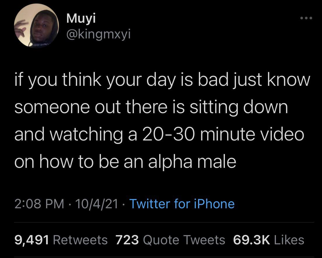 . Muyi ' ' @kingmxyi If You Think Your Day Is Bad Just Know Someone Out There Is Sitting Down And Watching A 20—30 Minute Video On How To Be An Alpha Male 2:08 PM ° 10/4/21 ° Twitter For IPhone 9,491 Retweets 723 Quote Tweets 69.3K Likes https://inspirational.ly
